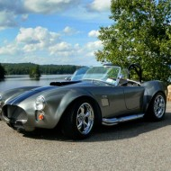 Cobra by the lake